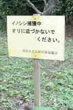 臼井さん2