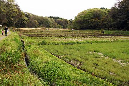 島次郎農園4